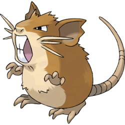 File:250px-020Raticate.png