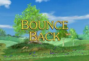 Sunny Patch Bounce Back