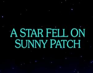 Sunny Patch A Star Fell on Sunny Patch
