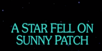 A Star Fell on Sunny Patch