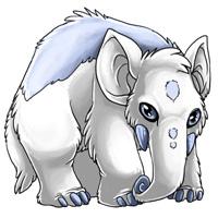 Arctic eledon