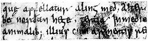 Angelsächsische Schrift RdGA Band 1 Tafel 05-05.jpg