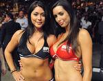 UFC ring girls
