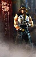 Kobra the Street Fighter