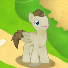 Crescent Pony Character