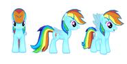 Rainbow Dash model