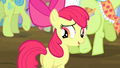 "Apple Bloom ""aren't you curious?"" S4E20.png"