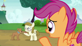 "Scootaloo ""doesn't want anything to do with her"" S7E6.png"