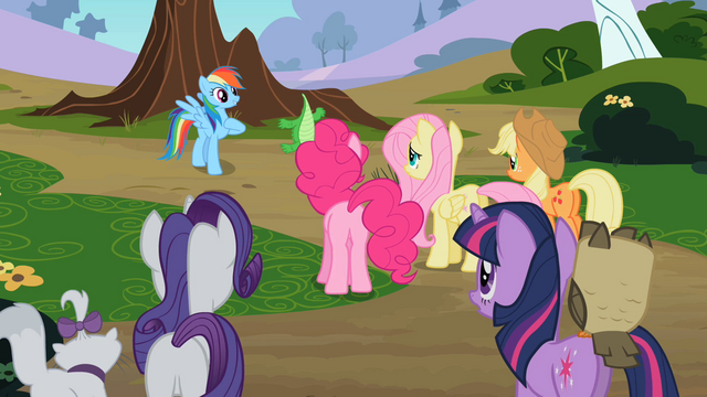 File:Main ponies with their pets S2E7.png