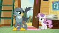 "Gabby ""griffons and cutie marks just don't mix"" S6E19.png"