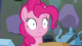 Pinkie Pie entranced in the kitchen S6E21.png