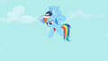 """Rainbow Dash """"Any questions"""" S2E07.png"""