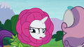 "Rarity ""you love puppet shows"" S7E6.png"