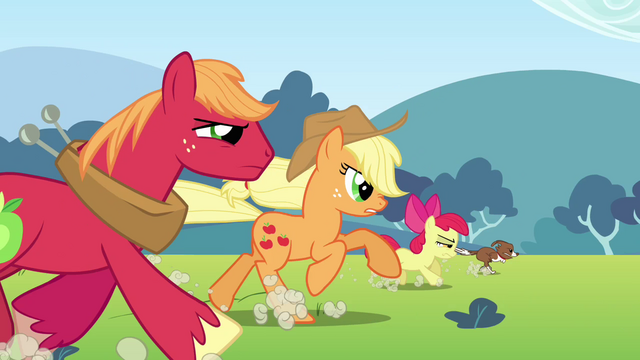 File:Applejack, Big McIntosh, Apple Bloom and Winona running S3E03.png