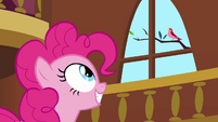 Pinkie Pie clone notices the bird S3E3