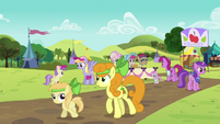 Ponies at the Sisterhooves Social S5E17