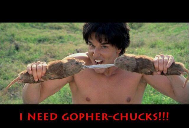 File:Gopher-Chucks.jpg