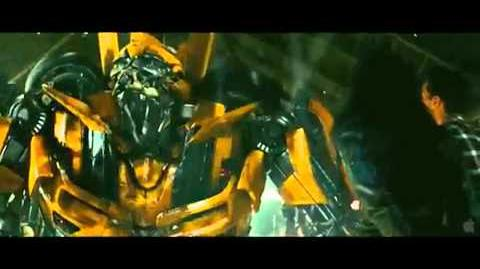 "Bumblebee ""I'm so excited"""