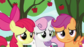 Cutie Mark Crusaders watch Gabby leave S6E19.png