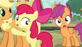 Apple Bloom and Scootaloo worried S03E11.png