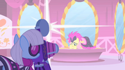 Photo Finish taking a photo of Fluttershy S01E20.png