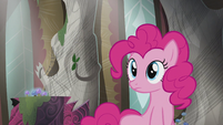 Pinkie sees Rainbow flying S5E8