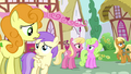 "Confused background ponies ""toupee?"" S02E18.png"