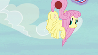 Fluttershy catches Applejack's shot with her tail S6E18