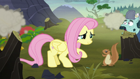 Squirrel thanking Fluttershy for the rescue S5E23