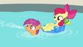 Apple Bloom and Scootaloo shocked S4E15.png