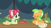 Apple Family my Apple Tart S3E8