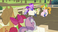 Applejack, Apple Bloom and Sweetie Belle watching pigs S2E05