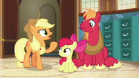 "Applejack ""now's as good a time as any"" S7E13"