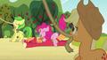 Pinkie Pie clone hits Big McIntosh S3E03.png
