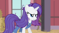 Rarity with messy and dusty mane S4E13