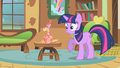 """Twilight """"what is Celestia's pet doing here?"""" S01E22.png"""