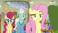 Fluttershy being particularly reprimanding S6E11.png
