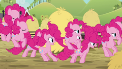 Pinkie Pie clones hopping through a field of haystacks S3E03