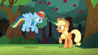 "Applejack ""I can count on ya to join"" S6E18"