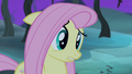 """Fluttershy """"I did"""" S4E07.png"""