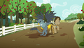 Gabby helping Dr. Hooves with his cart S6E19.png