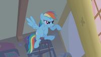 Rainbow Dash Ready To Pounce S1E09