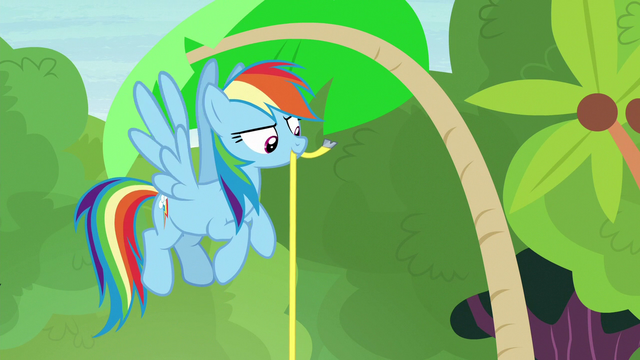 File:Rainbow Dash measuring the palm tree S7E5.png