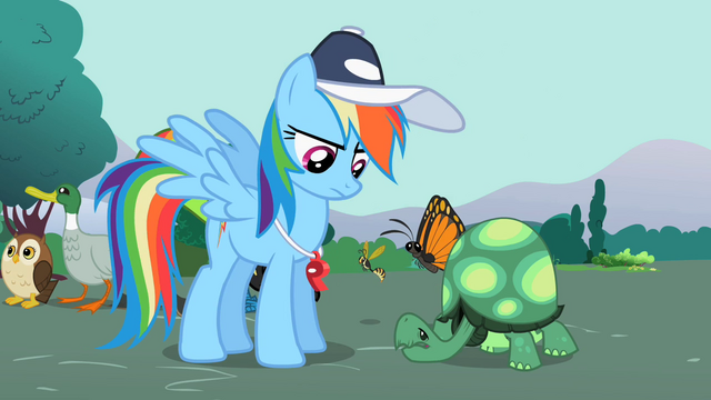 File:Rainbow Dash looking at Tank 2 S2E07.png