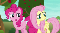 "Pinkie Pie ""maybe we weren't that bad"" S6E18"