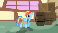 Rainbow Dash looks behind her S1E25