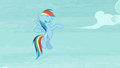 Rainbow does a little dance S5E15.png
