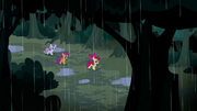 CMC continue through the woods S5E6.png