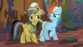 "Daring Do ""I told you to warn me"" S6E13.png"