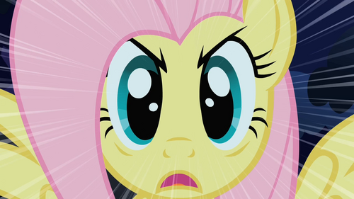 Fluttershy Stare S01E17.png
